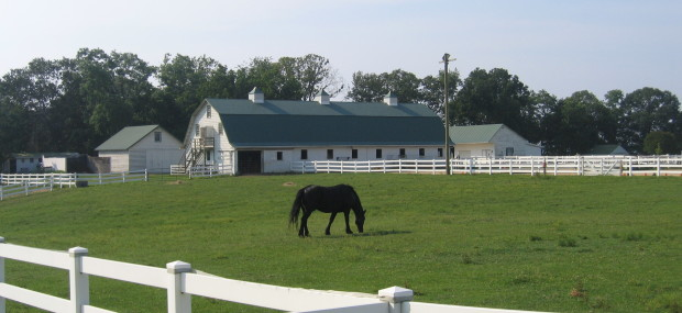Greenwell pasture and barn