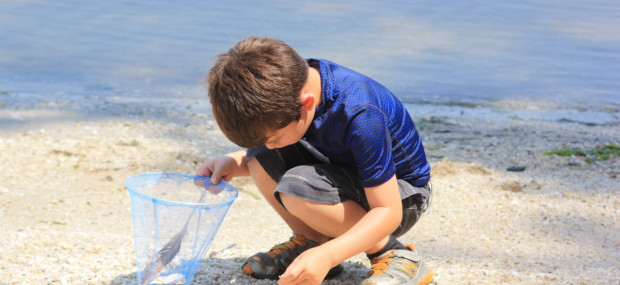 Boy looking for shells by the water at Nature Time Camp